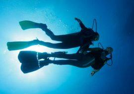 Safari photo sous-marin